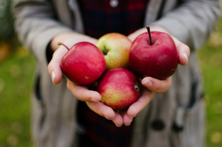 Apples - Photo by Aarón Blanco Tejedor on Unsplash