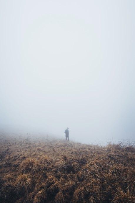 Mist - Photo by Alessio Lin on Unsplash