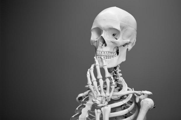 Thinking Skeleton - Photo by Mathew Schwartz on Unsplash