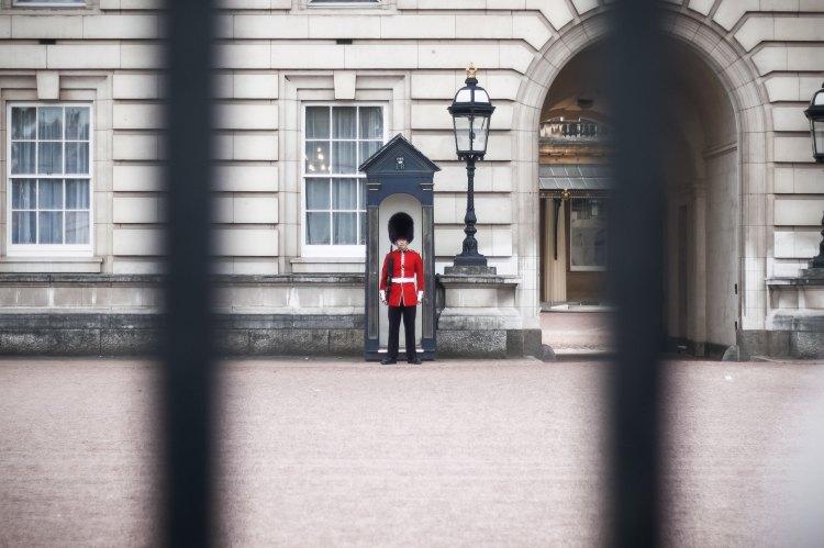 Guard - Photo by Kutan Ural on Unsplash